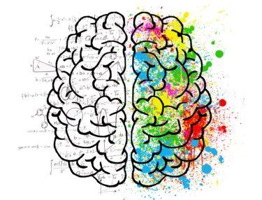 メンタリストと心理学者の違いを紹介!!誰でもわかる簡単説明。